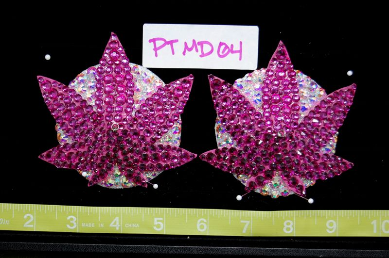 PTMD04 Pasties