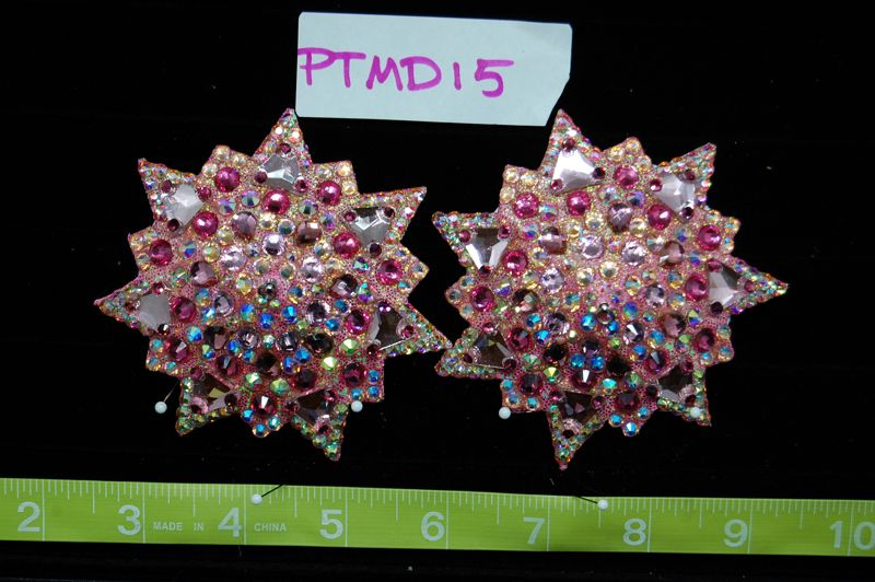 PTMD15 Pasties